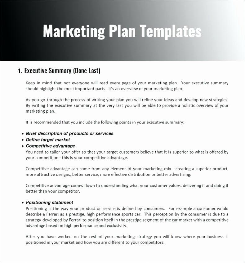Nonprofit Marketing Plan Template Awesome Non Profit organization Plan Template