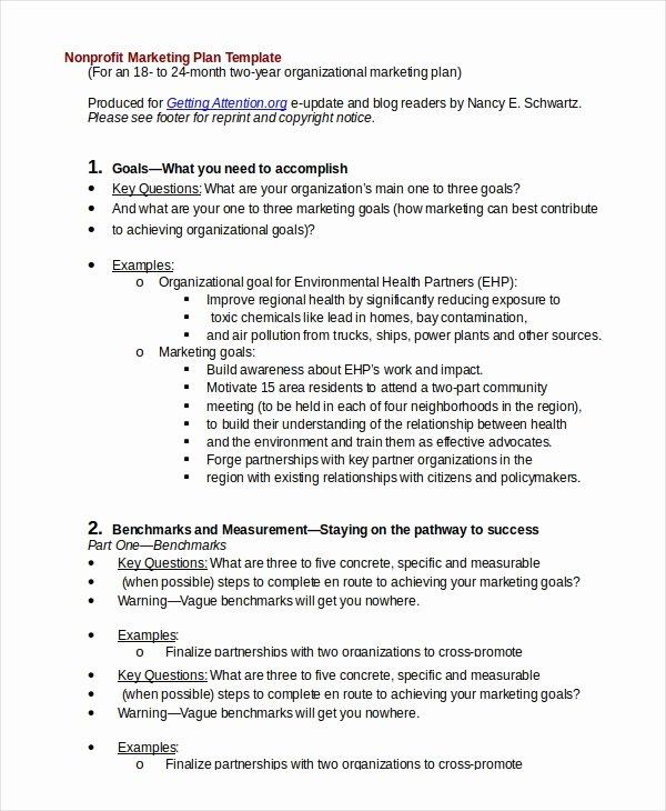 Nonprofit Marketing Plan Template Beautiful 20 Marketing Plan Templates