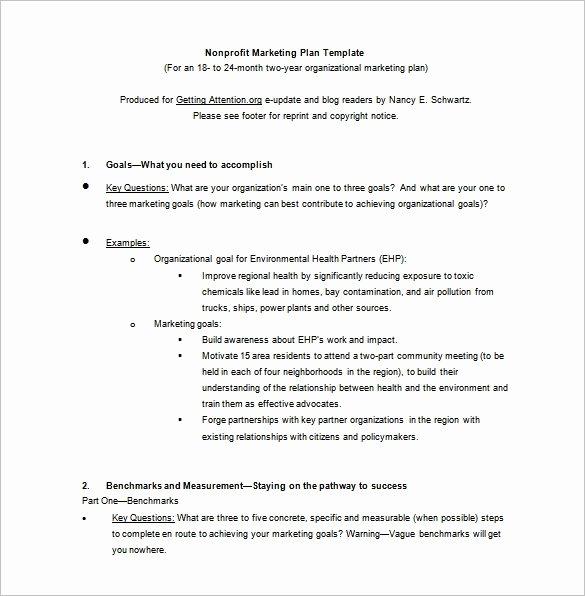 Nonprofit Marketing Plan Template Beautiful 9 Marketing Plan Templates Free Sample Example format