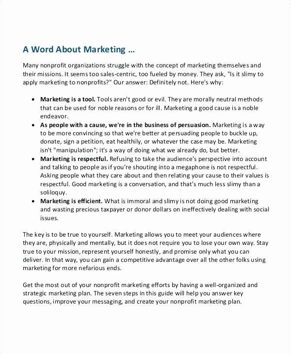 Nonprofit Marketing Plan Template Luxury Nonprofit Marketing Plan Template Free – Giancarlosopofo