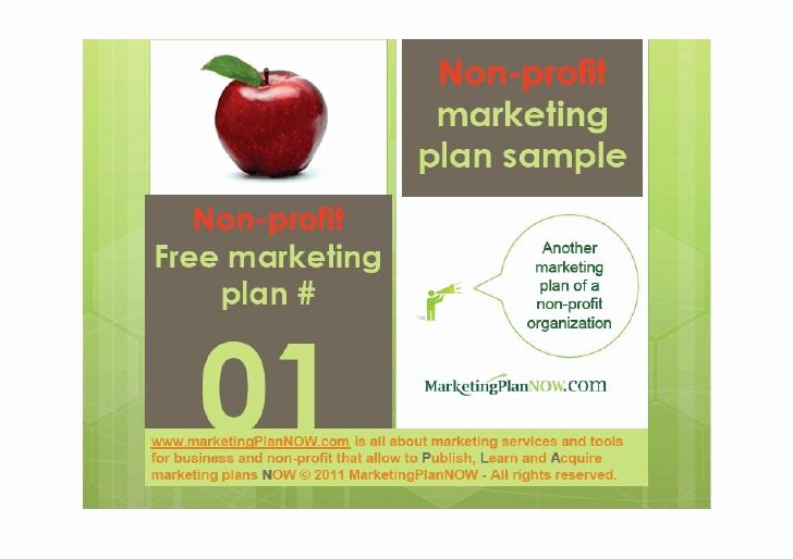 Nonprofit Marketing Plan Template New Free Marketing Plan Sample Of A Non Profit African Refugee