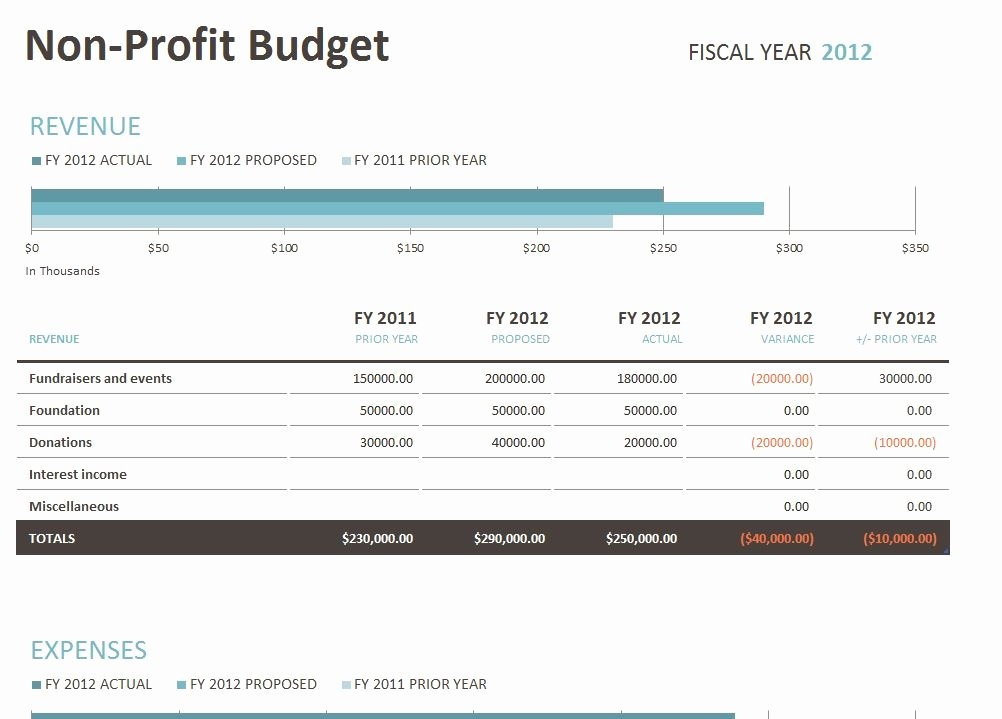 Nonprofit Operating Budget Template Luxury Non Profit Bud Template