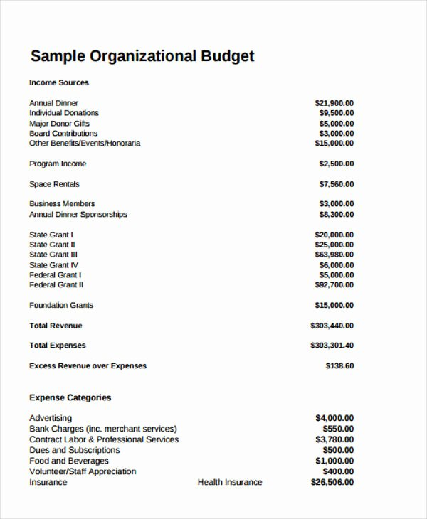Nonprofit Program Budget Template Luxury 12 Non Profit Bud Templates Word Pdf Excel