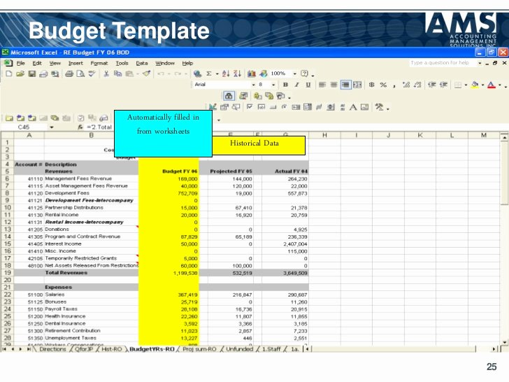 Nonprofit Program Budget Template Luxury Operating Bud Template