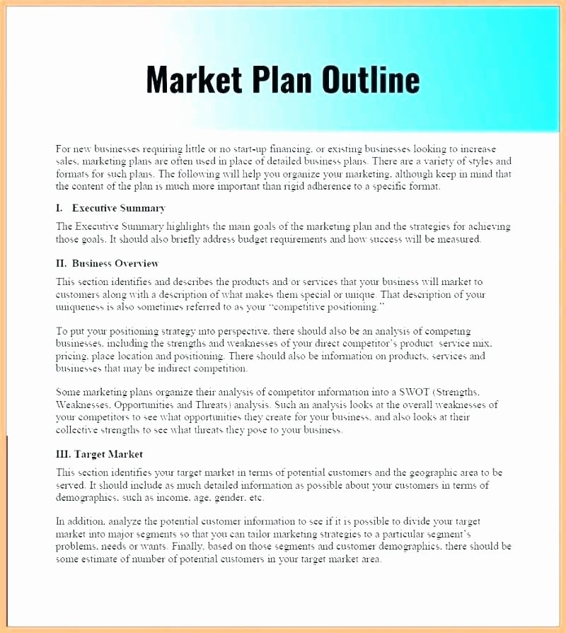 Nonprofit Succession Planning Template Best Of Strategic Plan Executive Summary Template Succession Plan