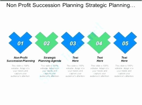 Nonprofit Succession Planning Template Elegant Nonprofit Succession Planning Template Nonprofit