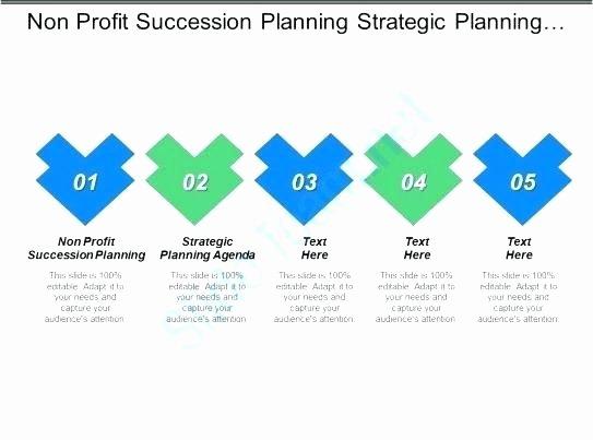 Nonprofit Succession Planning Template Elegant Nonprofit Succession Planning Template Nonprofit