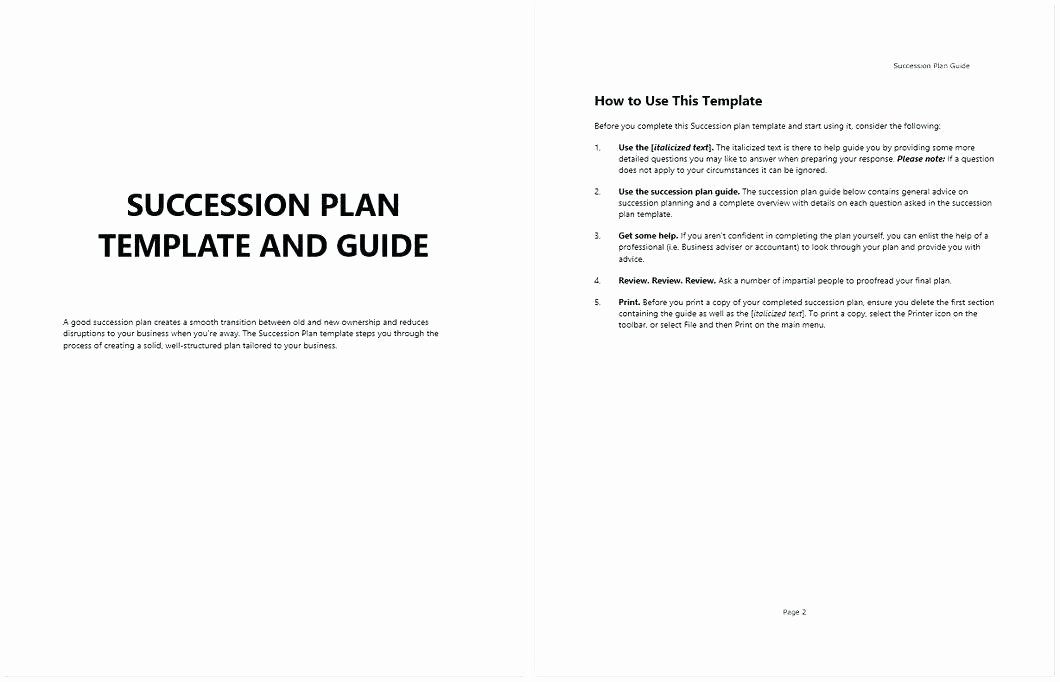 Nonprofit Succession Planning Template Luxury Nonprofit Succession Planning Template Timeline 7 Stages