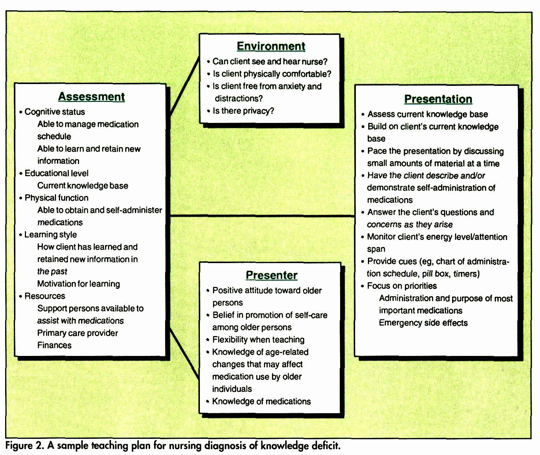 Nursing Teaching Plan Template New Nursing Process Teaching Elderly Clients