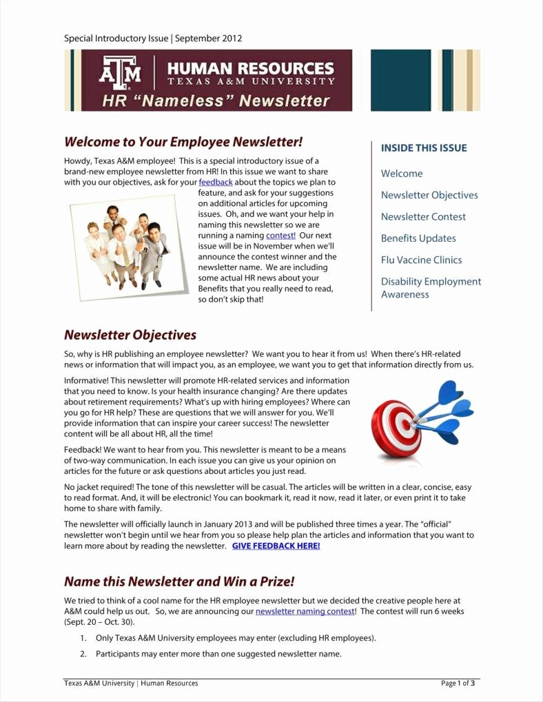 One Page Newsletter Template Lovely 9 E Page Newsletter Templates Free Pdf Doc format