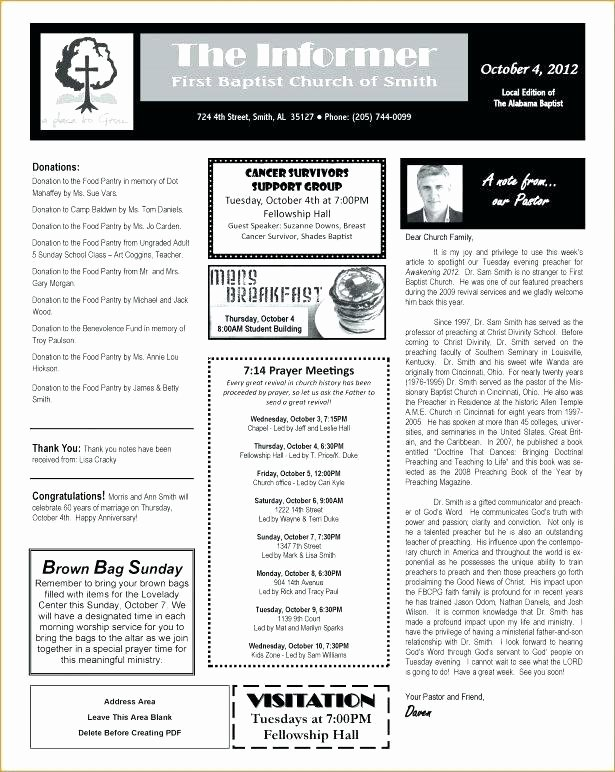 One Page Newsletter Template New E Page Newsletter Template Model Versatile Microsoft