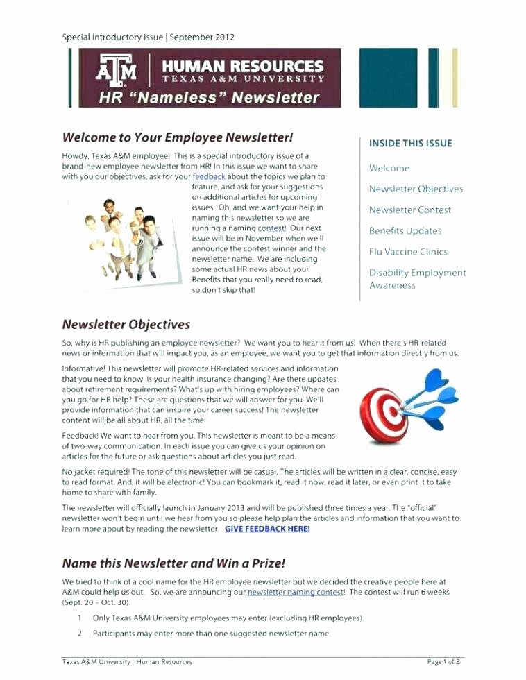 One Page Newsletter Template Unique One Page Newsletter Template – Maney