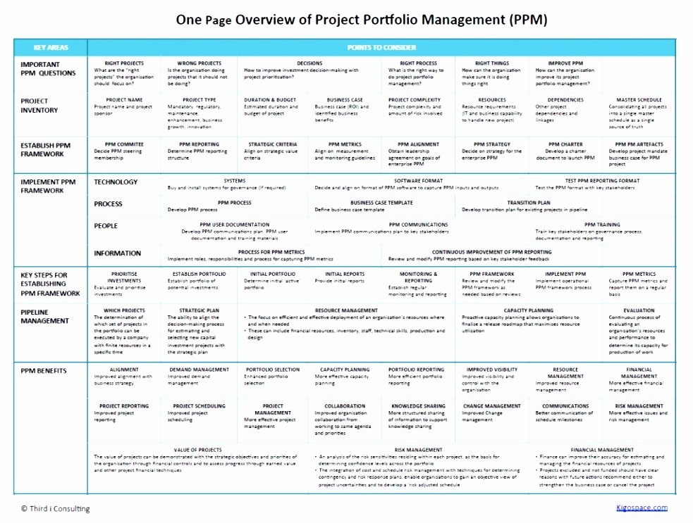 One Page Project Plan Template Best Of 12 E Page Project Plan Template Ytwer