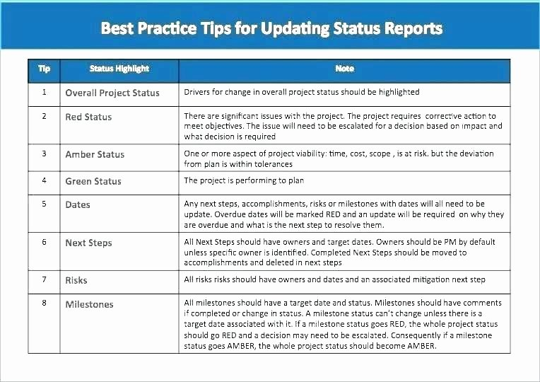 One Page Project Plan Template Elegant Status Page Template E Page Project Status Report