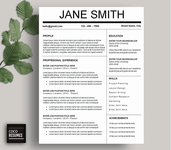 One Page Resume Template Free Awesome E Page Resume Template Cv Template for Ms Word Mac or Pc