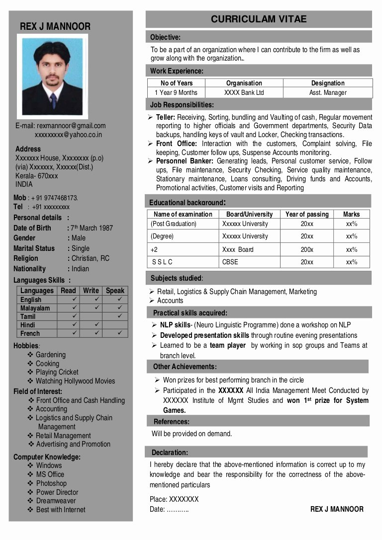 One Page Resume Template Word Beautiful Resume 1 Page
