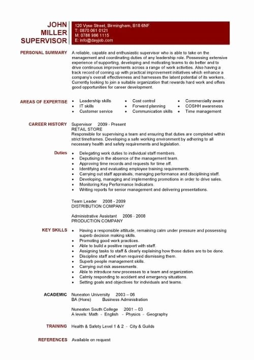 One Page Resume Template Word Unique E Page Resume Template Word Best Resume Collection
