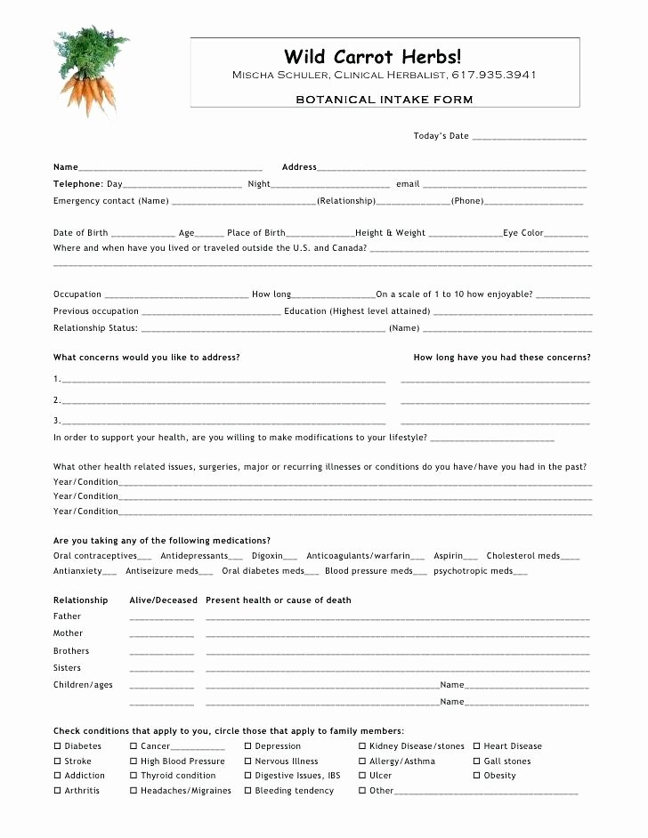 Patient Intake form Template Elegant Massage Client Intake form Template Food Pantry Sheet Free