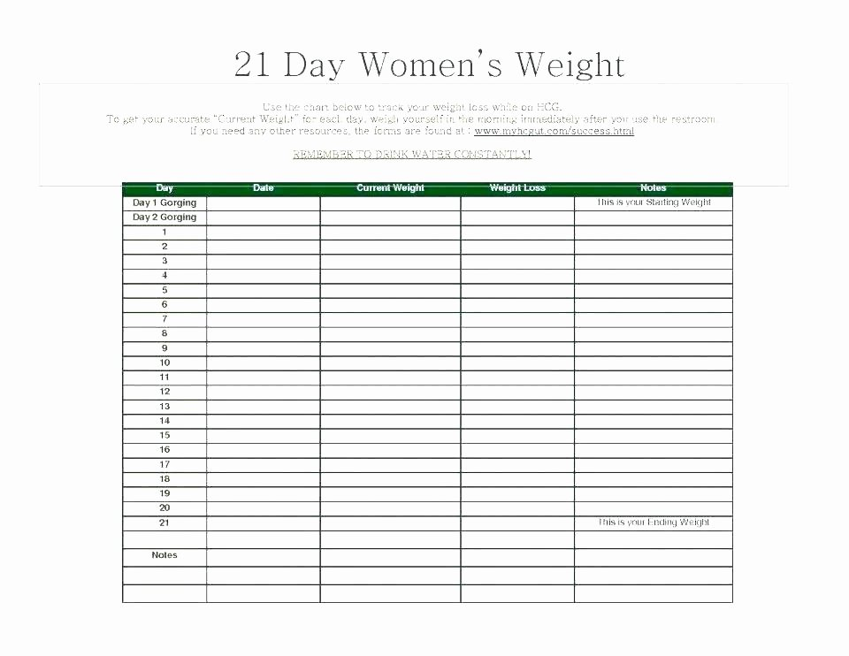 Patient Tracking Excel Template Awesome Weight Loss Tracking Spreadsheet Template Download Daily