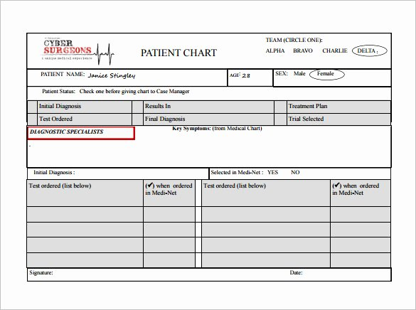 Patient Tracking Excel Template Luxury 7 Patient Chart Templates Doc Pdf Excel