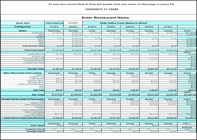 Payment Tracker Excel Template Unique Template Credit Card Tracking Spreadsheet Inspirational
