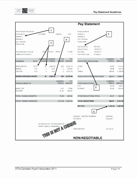 payroll check printing template free pay stub