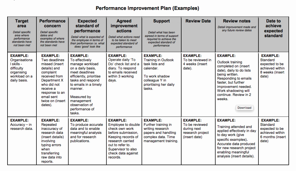 Performance Action Plan Template Awesome Examples Performance Improvement Plans for Employees