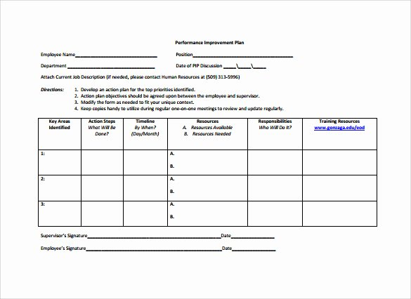 Performance Action Plan Template Lovely 12 Sample Employee Action Plan Templates