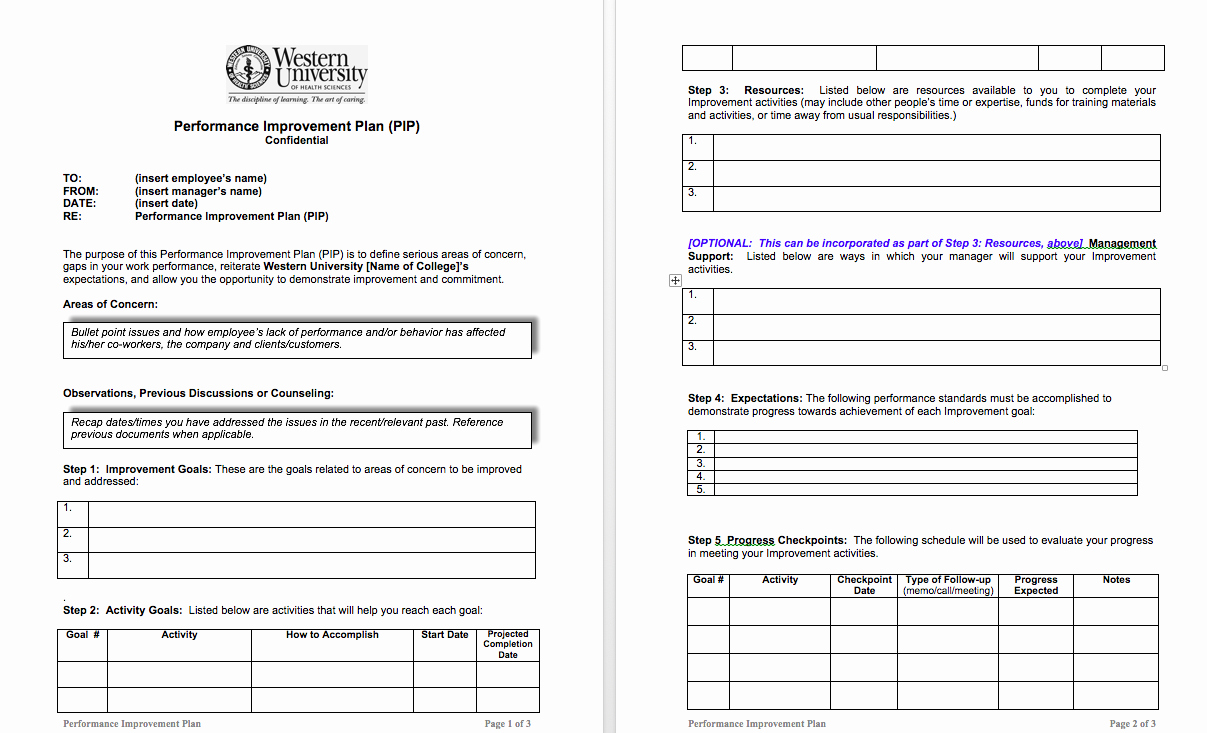 Performance Action Plan Template New Examples Performance Improvement Plans for Employees