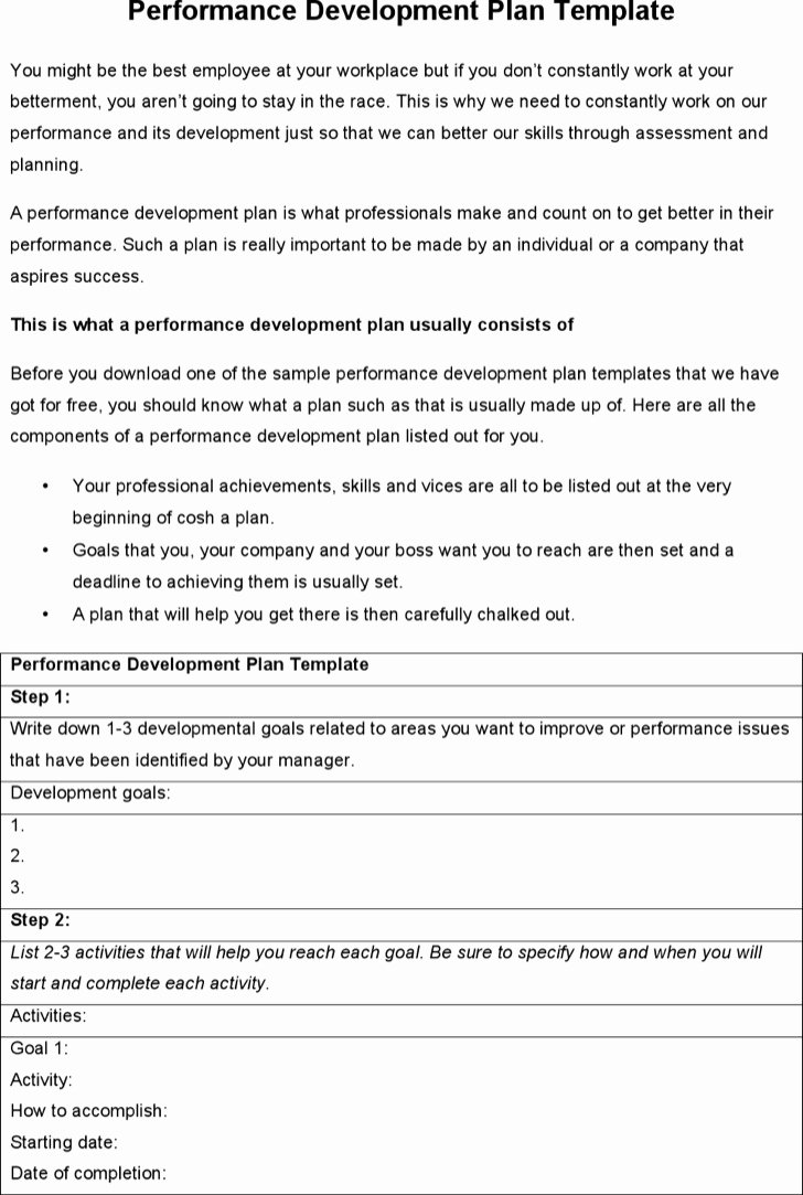 Performance Development Plan Template Lovely 6 Sample Performance Development Plan Templates to