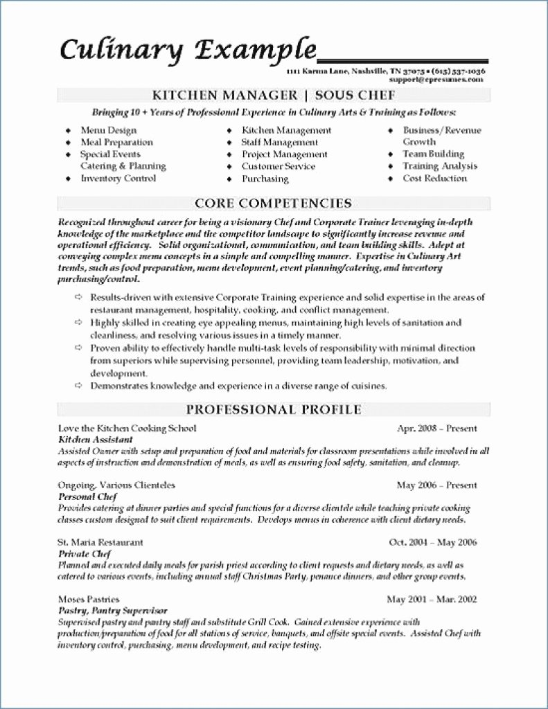 Performing Arts Resume Template Lovely Performing Arts Resume Template