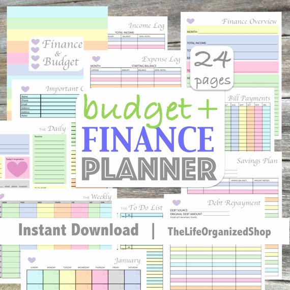 Personal Finance Planner Template New Bud Planner Finance Planner Finance Binder Bud