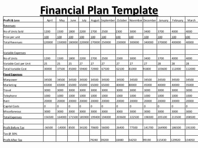 Personal Financial Planner Template Unique 8 Financial Plan Templates Excel Excel Templates