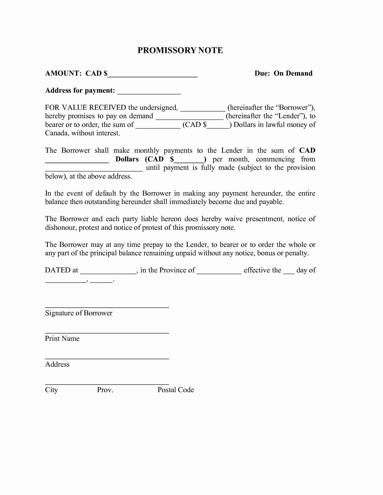 Personal Loan Promissory Note Template Luxury Demand Letter Promissory Note Template Samples
