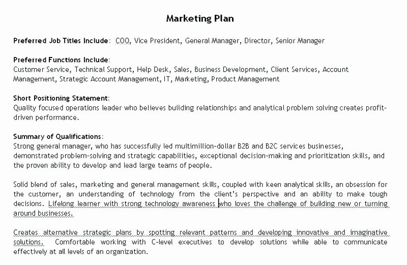 Personal Marketing Plan Template Best Of Marketing Plan Outline Template – Template Gbooks