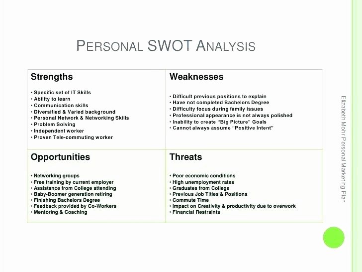 Personal Marketing Plan Template Inspirational Personal Swot Analysis Sample Download Template Pdf Report