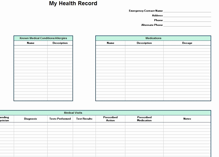 Personal Medical Record Template Best Of Personal Health Record Template