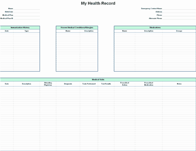 Personal Medical Record Template Lovely Personal Health Record