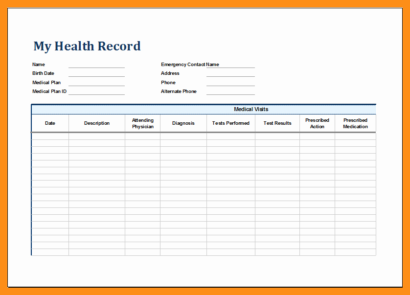 Personal Medical Record Template Unique 12 13 Personal Health Records Template