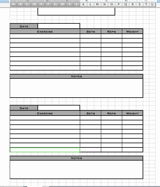 Personal Trainer Workout Template Beautiful Personal Workout Log Template