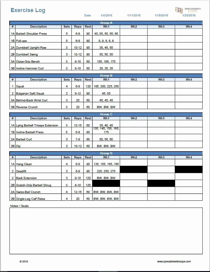 Personal Trainer Workout Template Best Of Workout Log Template Spreadsheetshoppe