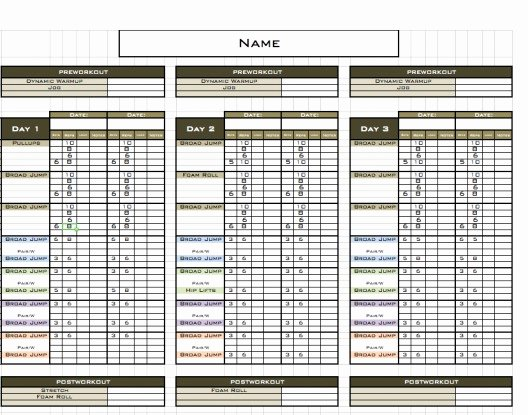 Personal Trainer Workout Template Fresh Excel Training Designs Fast Easy Affordable