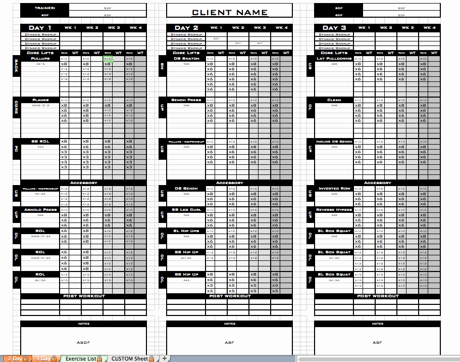 Personal Trainer Workout Template Inspirational Excel Personal Training Templates Excel Training Designs