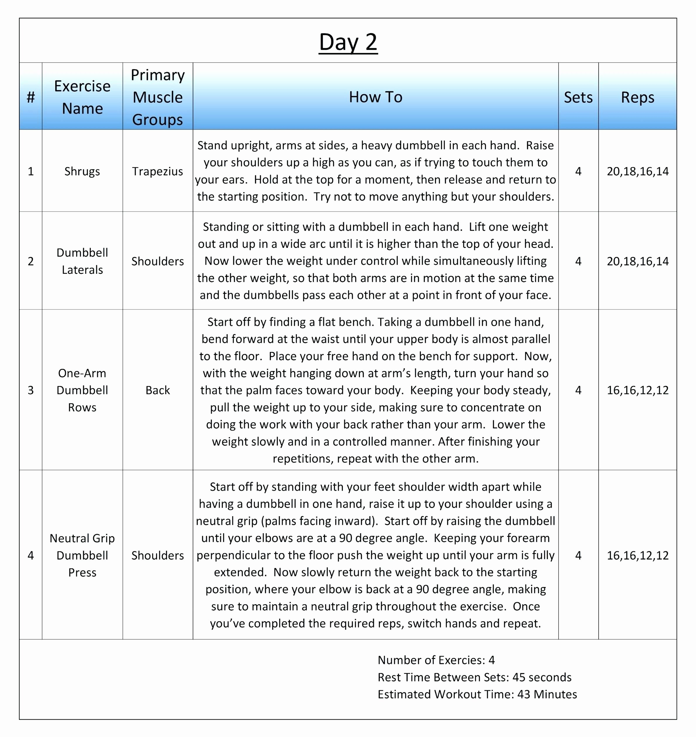 Personal Trainer Workout Template Inspirational Personal Trainer Workout Plan Template