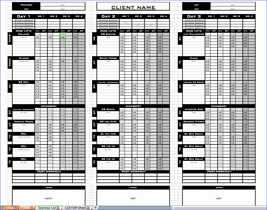 Personal Training Program Template Elegant Workout Template Excel