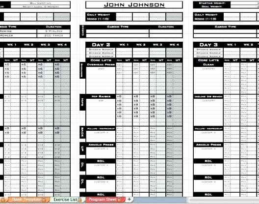 Personal Training Program Template Inspirational Line Personal Fitness Training Has Be E An Affordable