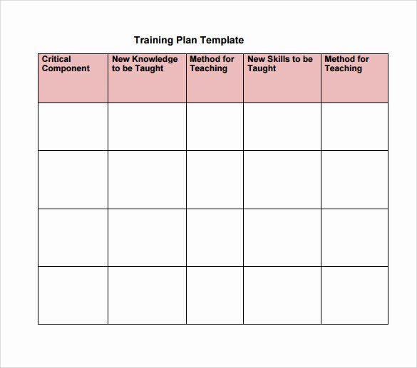 Personal Training Program Template Lovely Training Plan Template 19 Download Free Documents In