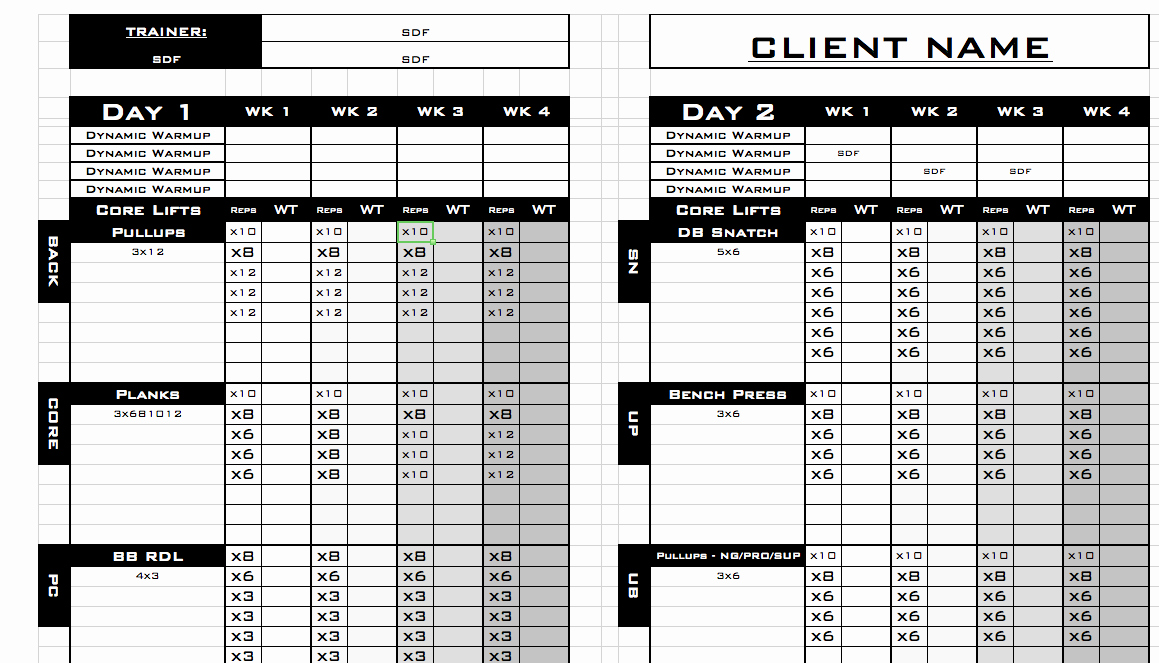 Personal Training Programs Template Beautiful Personal Trainer Workout Templates