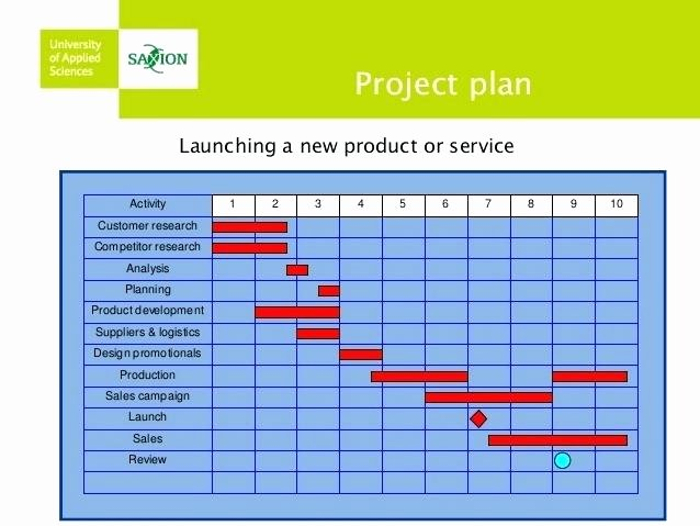 Pharmaceutical Product Launch Plan Template Elegant 4 Month Product Launch Pharmaceutical Plan Template