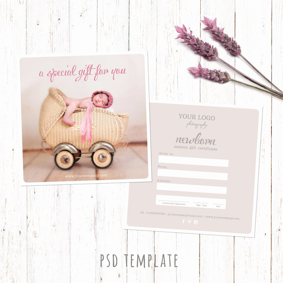 Photography Gift Certificate Template Free Fresh Gift Certificate Template Newborn Session Photography T